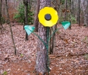 An iron sunflower fabricaated from a disk and old plow parts.  This one is about 5 feet tall!