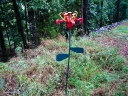 Imaginary flower made from old rail road scrap iron, including 4 railroad spikes.